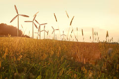 Wind generator turbines on sunset Royalty Free Stock Images