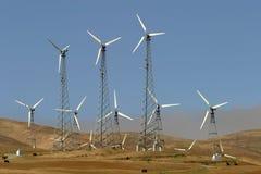 Wind-Generatoren, Kühe und Verunreinigung Stockfotografie