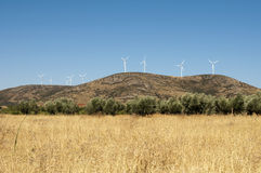 Wind generators on the top of the mountain Stock Image