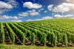 Wind generators turbines on summer landscape Stock Images