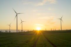 Wind generators turbines on sunset spring landscape Royalty Free Stock Images