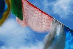 Wind-häst flagga i Tibet Arkivbild