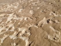Intricate wind-blown sand patterns on the surface of a dune. The wind has blown intricate and delicate sand patterns into the surface of a dune in Denmark. There royalty free stock photography