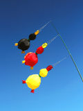 Wind kites Royalty Free Stock Photo