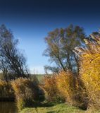 Wind an lakeshore von einem kleinen Fischensee in Sarisap, Hungar Stockfotografie