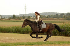 Wind in mane. Equestrienne rides on a horse at a gallop. Hanoverian Royalty Free Stock Photos