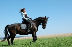 Wind in the manes. Stock Images