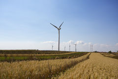 Wind mill  in autumn farm land Stock Image