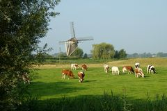 Wind mill countryview Royalty Free Stock Image