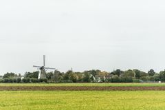 Wind mill in Dutch landscape Royalty Free Stock Image