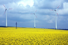 Wind mill field and rural landscape Stock Image