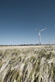 Wind mill in grain Stock Photography