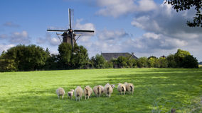 Wind mill in netherlands. Tranquil scene in Netherlands, shapes with Wind mill stock image