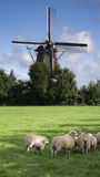 Wind mill in netherlands. Tranquil scene in Netherlands, shapes with Wind mill royalty free stock photo