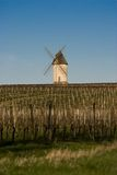 Wind Mill in Vineyard Stock Image