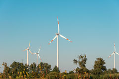 Wind mills during bright. Summer day Royalty Free Stock Photos