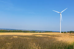 Wind mills in a cornfield Royalty Free Stock Image