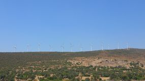 Wind mills. Landscape with twelve white wind mills green grass bushes and trees on the ground and bright blue sky Stock Photos