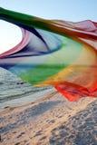 Wind op het strand. Stock Fotografie