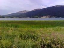Wind op landschap Royalty-vrije Stock Afbeeldingen