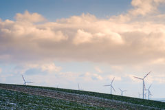 Wind-park in landscape with clouds and field with a little snow Stock Image