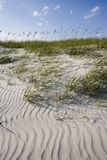 Wind patterns on beach. Wind blown patterns in the sand and beach grasses.  Myrtle Beach , South Carolina Royalty Free Stock Photos