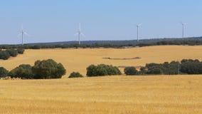 Wind Power in the Desert of Spain. Massive wind turbines generating power. Heat haze effect on desert land. Clean Energy producing of Windmills. Alternative stock video