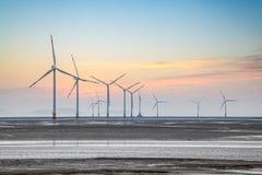 Wind power farm on the coastal mudflat in sunrise Stock Image