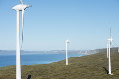 Wind Power Farm Western Australia Stock Photography
