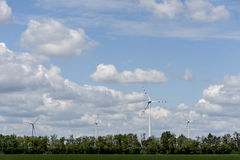 Wind power field on summer day Stock Image