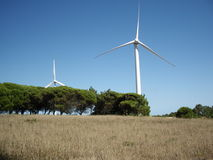 Wind Power Generator. Back is a  blue sky with a wind power generator and trees Stock Photo