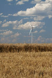Wind power generator in a wheat field Royalty Free Stock Image