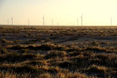 Wind Power in the gobi. Wind Power in the morning  in  Inner Mongolia , China Royalty Free Stock Photos