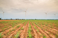 Wind power installations in agriculture the country. Royalty Free Stock Photography