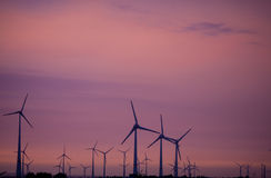 Wind power mills in sunset sky Royalty Free Stock Image