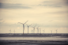 Wind power at the mud flat near sea shore Stock Photos