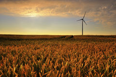 Wind power plant in the fieds Stock Photography