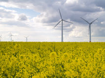 Wind power plants Stock Image