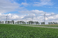 Wind power plants. Royalty Free Stock Image