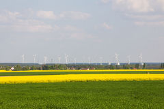 Wind power plants and rape fields Royalty Free Stock Image