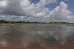 Wind power in Rio Grande do Norte, Brazil Royalty Free Stock Photos