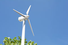 Wind power and sprouts Stock Photography