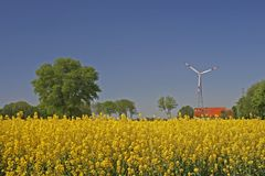 Wind power station with rape field in Germany Stock Photos