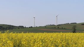 Wind power station in a raps fields. Rotating blades of energy generators. Ecologically clean electricity. Modern technologies for. The use of natural resources stock video