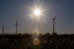Wind Power Stations in the Evening Sun Stock Images
