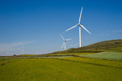 Wind Power Turbine. And grasses royalty free stock photo