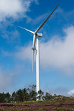 Wind power turbine maintenance. Wind power turbine stoped for maintenance Royalty Free Stock Photo