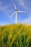 Wind power turbines Royalty Free Stock Photography