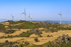 Wind power turbines farm on a green landscape Stock Photography