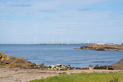 Wind power turbines and natural heath Royalty Free Stock Photos